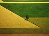 Agriculture geometry #2 acrylic on canvas on wood panel 36__by 48__mar 2014.jpg