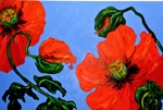 Poppies #1 66x78 TS2002-1 Sold.JPG