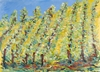 Umbrian postcards, 2006 027.jpg